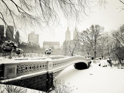 美国,弓桥,曼哈顿,中央公园,纽约市,纽约市