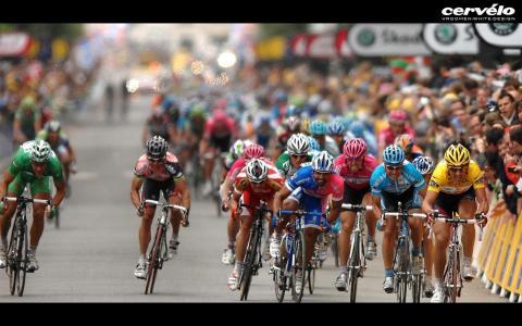 自行车比赛,群发,勤奋,耐力,比赛