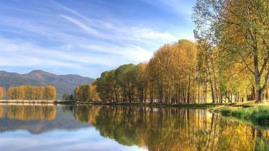 镜子水,树木,绿色灌木