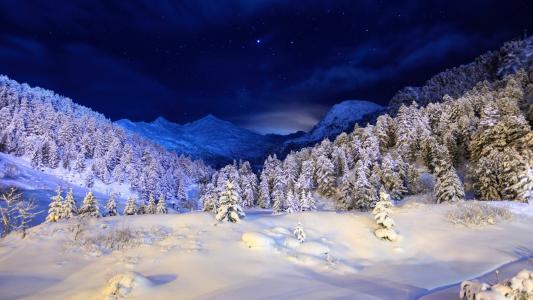 雪,山,冬天,树,天空,蓝色,树,夜