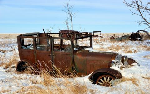 雪,车,领域