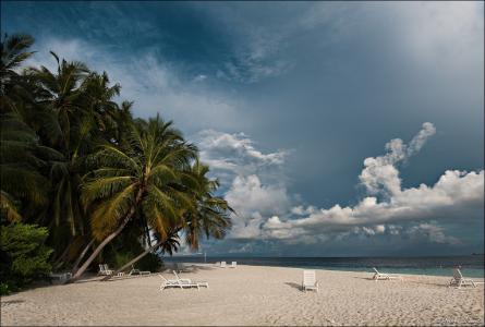 早上,棕榈树,沙滩,天空,菲哈尔赫,马尔代夫,环礁,安德烈Shumilin