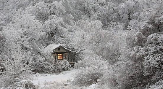 狩猎小屋,冬季森林,雪,窗口灯