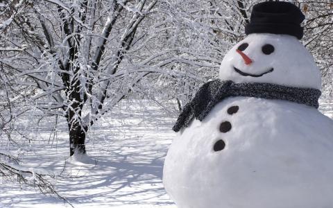 雪人,冬季,景观,性质,雪,树木