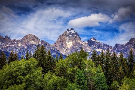 大提顿国家公园,怀俄明州,大提顿,怀俄明州,山区,树木