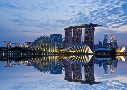 天空,倒影,海湾花园,摩天大楼,灯光,云,建筑,晚上,新加坡