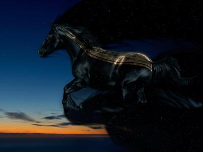马,马,夜
