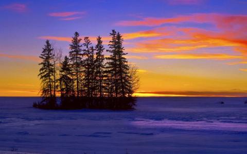 性质,冬天,湖,树,冰,胰岛,天空,云,日落