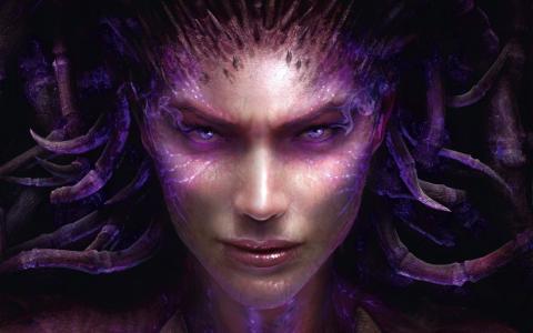 查看,星际争霸,脸上,莎拉凯里甘