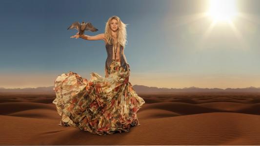 夏奇拉,夏奇拉,歌手,金发,长长的头发,裙子,顶部,装饰,风,太阳,沙漠,沙,鸟,背心,天空
