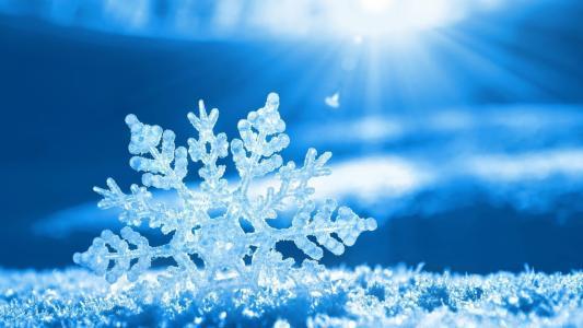 雪花,冬天,新的一年,雪