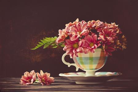 杯子,飞碟,鲜花,菊花