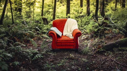 椅子,性质,主题,照片,创意