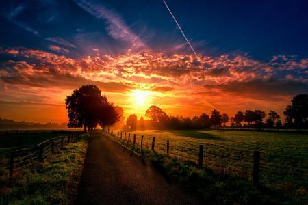 路,日落,景观