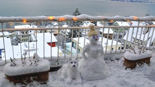 两个雪人,一个雪人,一只雪狗,一个带花环的篱笆,雪,冬天的城市