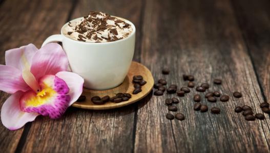 咖啡,泡沫,饮料,卡布奇诺咖啡,盅,粮食,巧克力