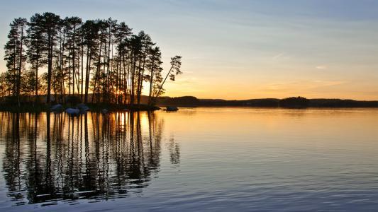 日落,性质,树,湖,Otrazhenien