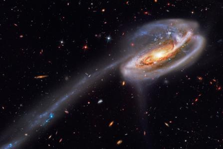 星系,星座,蝌蚪,蝌蚪,星系,Ugc 10214