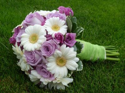 婚礼,优雅,酷,可爱,非洲菊,不错,玫瑰,玫瑰,美丽,鲜花,花,花束