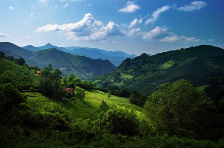 西班牙,阿斯图里亚斯,坎塔布连山,丘陵,绿色,草,树,夏天,天空,云