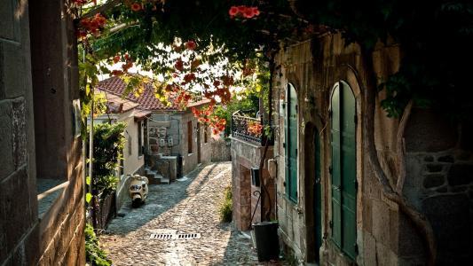 法国,路面,城市,街道,房屋