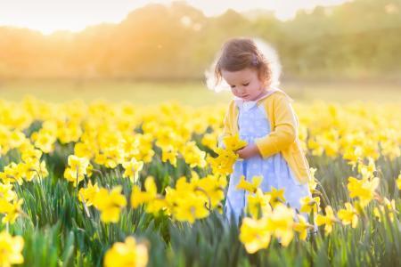 孩子,女孩,礼服,衬衫,性质,春天,场,鲜花,水仙花