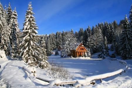 冬天,性质,喀尔巴阡,乌克兰,ozerovita