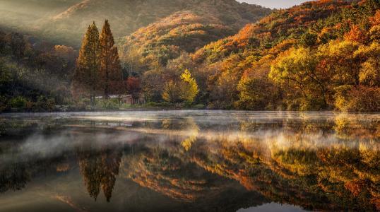秋天,韩国,丘陵,树木,房子,湖,反射,雾