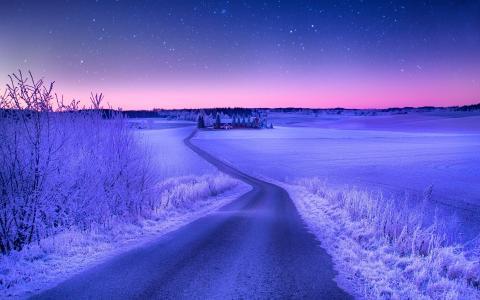 冬天,路径,雪,路,村,树