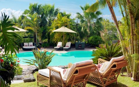 棕榈树,游泳池,沙发,轻便折叠躺椅,扶手椅,底座,游泳池