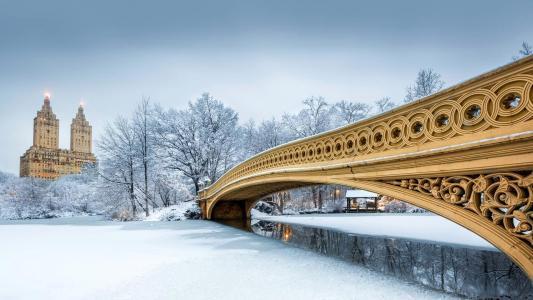 纽约,城市,冬天,公园,中央公园,桥梁