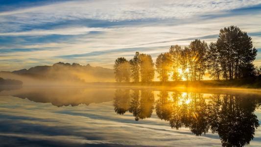 河,云,日落,树后面的太阳