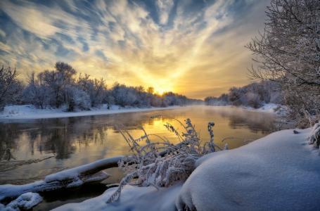 河,树,雪,霜,天空,反射,Neger(Roman)