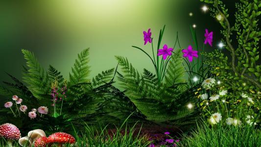 绿党,蘑菇,鲜花,背景
