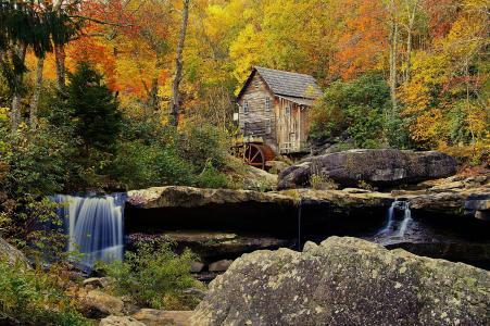 性质,秋季,森林,树木,磨机,天空,石头,流