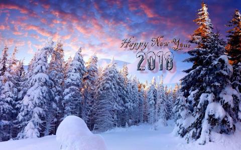 自然,景观,冬季,雪,雪堆,树木,云杉,新的一年