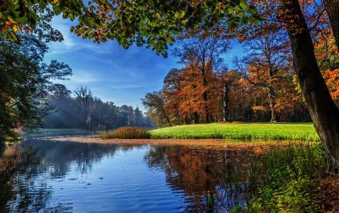 秋天,自然,美丽