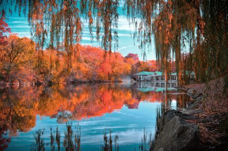 中央公园,纽约,纽约,中央公园,秋天,湖,树,叶子,绯红色,小房子,反射,石头,天空,云