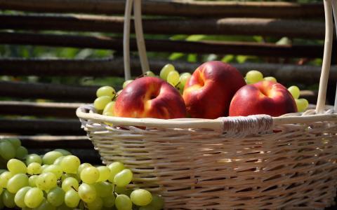葡萄,篮子,油桃,栅栏,水果