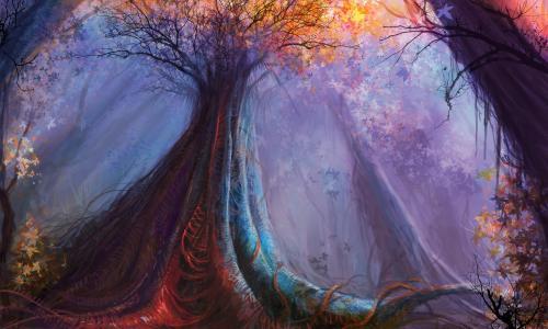 森林,颜色,由cloudminedesign,巨型强木,树木,艺术