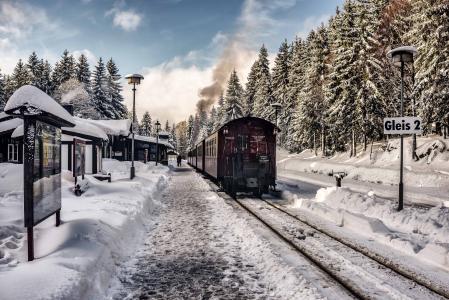 森林,雪,冬季,车站,火车,组成
