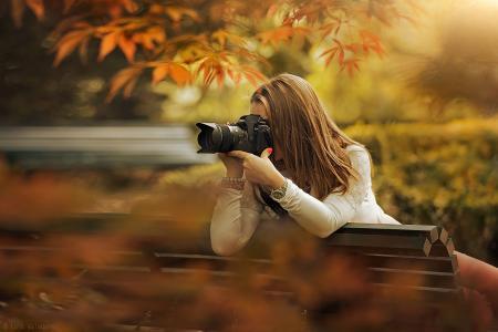 女孩,拍照,公园,长凳,秋天