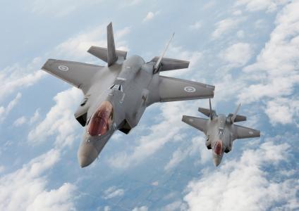 飞机,F-35,闪电II,马丁,加拿大,闪电,洛克希德,加拿大