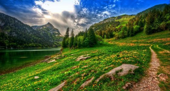 自然,瑞士,美丽,春天