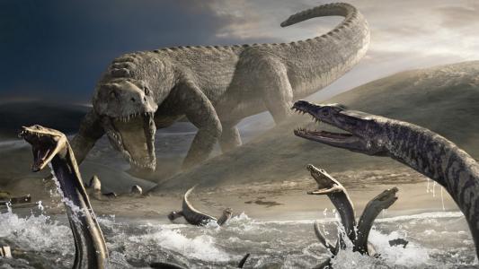 恐龙,动物