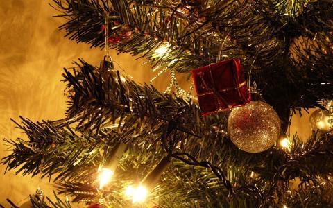 球,灯泡,圣诞树,新年
