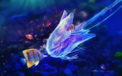 触手,水母,鱼,气泡,水下,蓝色