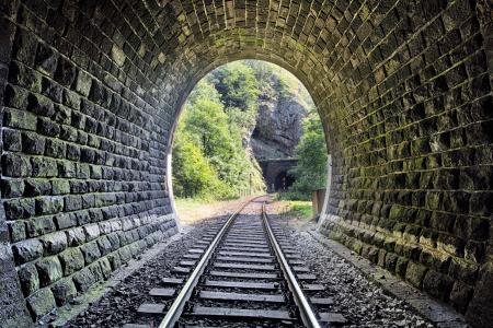 树木,铁路,铁路,石头,隧道