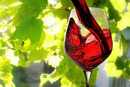 酒,玻璃,红,倒,葡萄,树叶