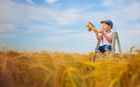 男孩,玩具,飞机,帽,梯子,领域,耳朵
